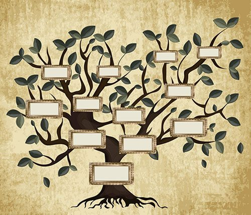 Find your roots with our new genealogy course