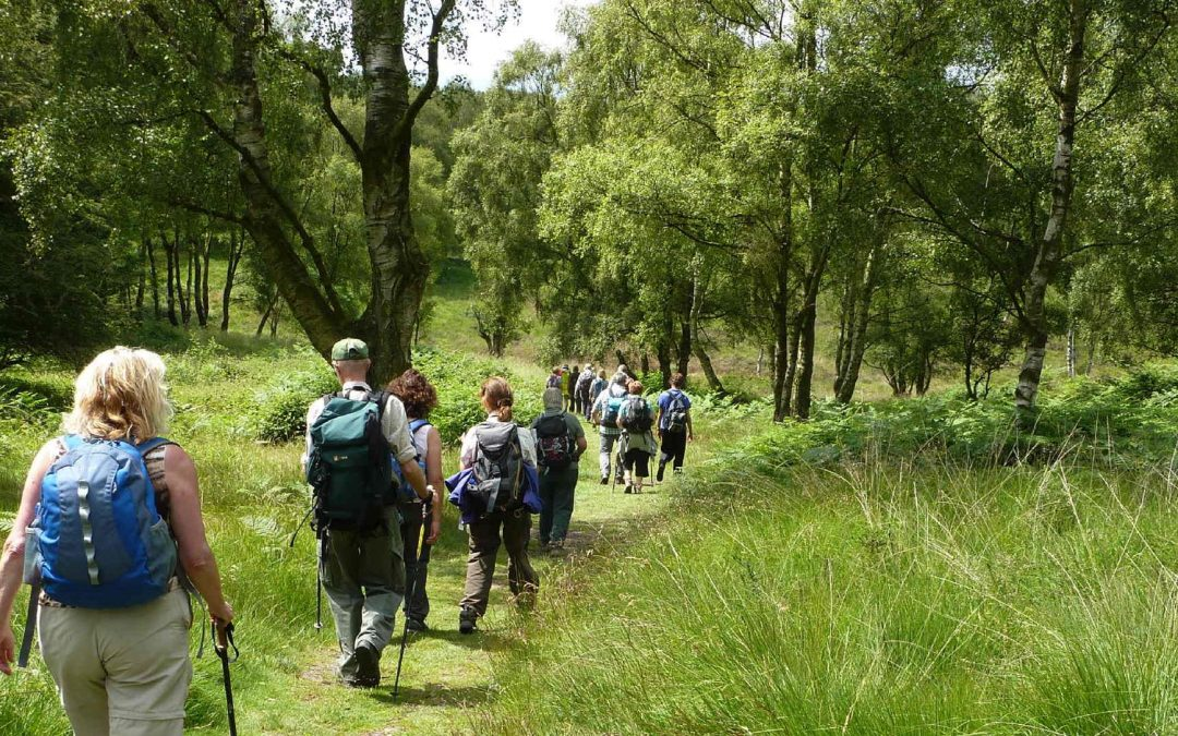Put a spring in your step – join the Kinver Library Walk on 6 April