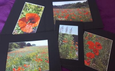 Take part in our Commemorative Poppy Exhibition
